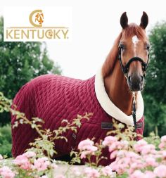 KENTUCKY Stall / Turnierdecke SHOW RUG - bordeaux