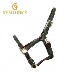 KENTUCKY Halfter PLAITED NYLON - olive green