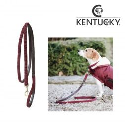KENTUCKY Hundeleine PLAITED NYLON - bordeaux