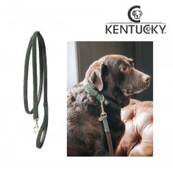 KENTUCKY Hundeleine PLAITED NYLON - olive green