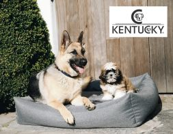KENTUCKY Hundebett SOFT SLEEP - grau