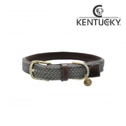 KENTUCKY Hundehalsband PLAITED NYLON - grau