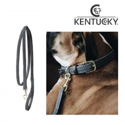 KENTUCKY Hundeleine PLAITED NYLON - grau