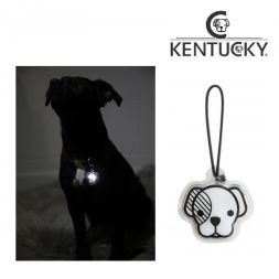 KENTUCKY Blink Light DOG HEAD