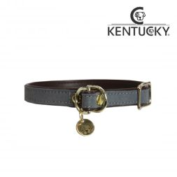 KENTUCKY Hundehalsband LOOP - grau