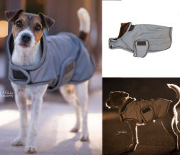 KENTUCKY Hundemantel DogCoat Reflective&Water Rep.